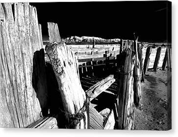 The Old Corral Canvas Print by Cat Connor