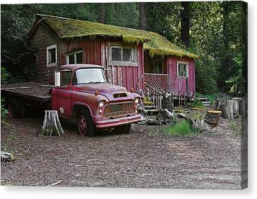 The Old Couple Of Hales Grove Canvas Print by Christine Till