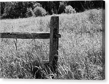 The Old Fence Canvas Print by Sharon L Stacy