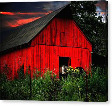 The Old Frederick Barn Canvas Print by Julie Dant