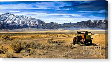 The Old One Canvas Print by Robert Bales