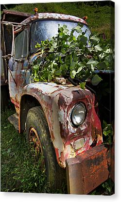 The Old Truck Canvas Print by Debra and Dave Vanderlaan
