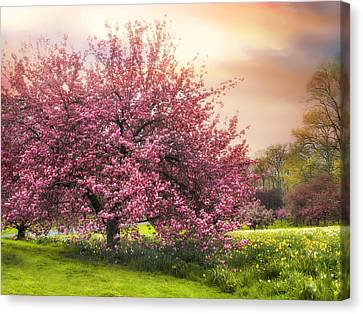 The Orchard Canvas Print by Jessica Jenney