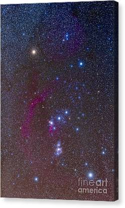 The Orion Constellation Canvas Print by Alan Dyer
