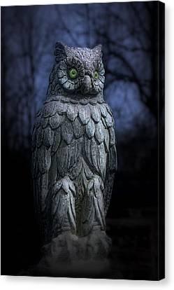 The Owl Canvas Print by Tom Mc Nemar