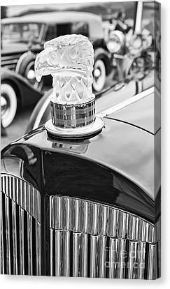 The Packard Eagle Hood Ornament At The Concours D Elegance. Canvas Print by Jamie Pham