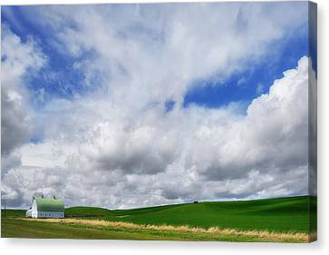The Palouse Stripe Canvas Print by Ryan Manuel