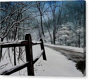 The Path Ahead Canvas Print by Daniel Carvalho