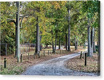 The Path Canvas Print by Carolyn Ricks