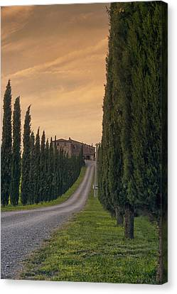 The Path Home Canvas Print by Andrew Soundarajan