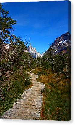 The Path To Mountains Canvas Print by FireFlux Studios
