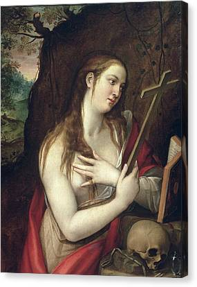 The Penitent Magdalene Canvas Print by Luis de Carbajal