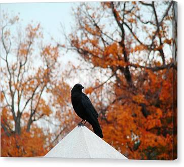 The Point Canvas Print by Gothicolors Donna Snyder