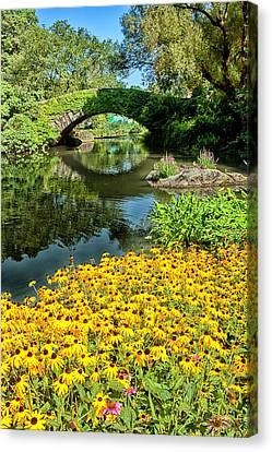 The Pond Canvas Print by Karol Livote