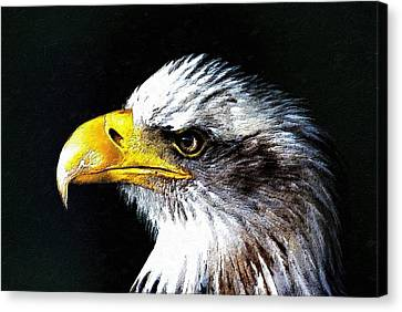 The Proud Eagle Canvas Print by Florian Rodarte