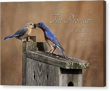 The Provider Canvas Print by Lori Deiter