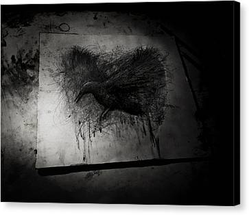 The Raven Il Canvas Print by Christian Klute