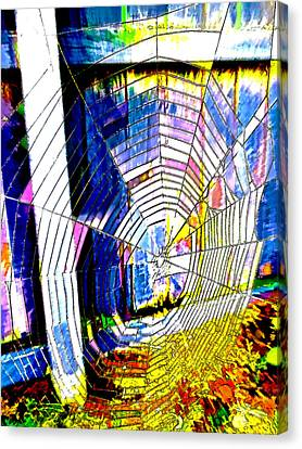 The Refracted Cobweb Canvas Print by Steve Taylor