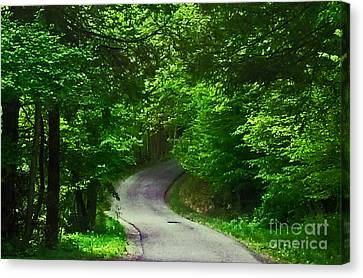 The Road Canvas Print by Katherine Williams