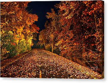 The Road Less Traveled - Blue Ridge Parkway I Canvas Print by Dan Carmichael