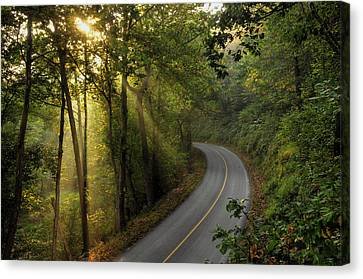 The Road Less Traveled Canvas Print by Dan Myers