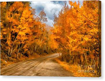 The Road Less Traveled Canvas Print by Jon Burch Photography
