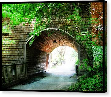 The Road To Beyond Canvas Print by Shawn Dall