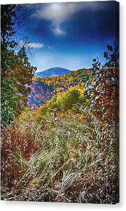 The Road To Cataloochee On A Frosty Fall Morning Canvas Print by John Haldane