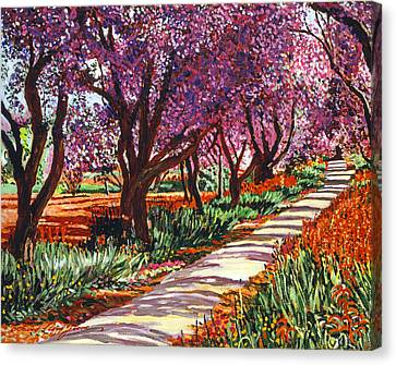 The Road To Giverny Canvas Print by David Lloyd Glover