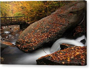 The Rock Canvas Print by Dan Myers