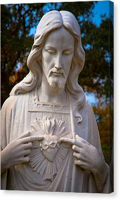 The Sacred Heart Canvas Print by Linda Unger