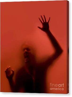 The Scream Canvas Print by Diane Diederich