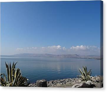 The Sea Of Galilee At Capernaum Canvas Print by Karen Jane Jones