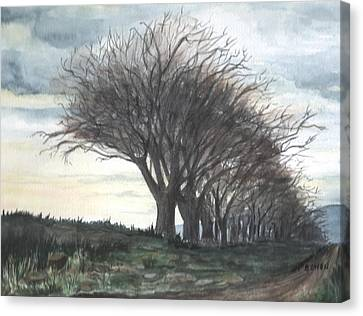 The Sentinels Canvas Print by Brenda Owen