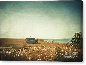 The Shack - Lbi Canvas Print by Colleen Kammerer