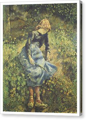 The Shepherdess Canvas Print by Camille Pissarro