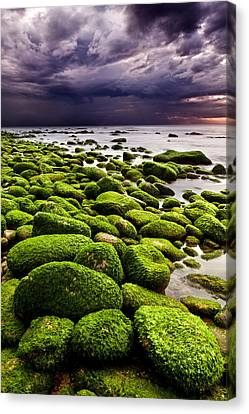 The Silence After The Storm Canvas Print by Jorge Maia