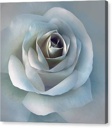 The Silver Luminous Rose Flower Canvas Print by Jennie Marie Schell