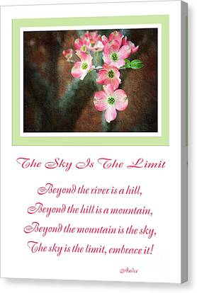 The Sky Is The Limit V 12 Canvas Print by Andee Design
