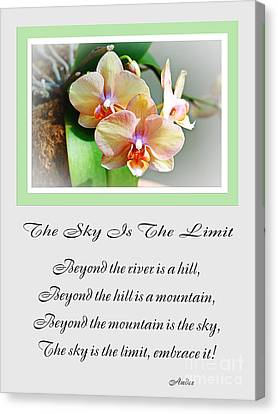 The Sky Is The Limit V 4 Canvas Print by Andee Design