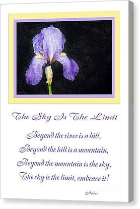 The Sky Is The Limit V 9 Canvas Print by Andee Design