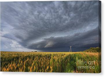 The Sky's The Limit Canvas Print by Dan Jurak