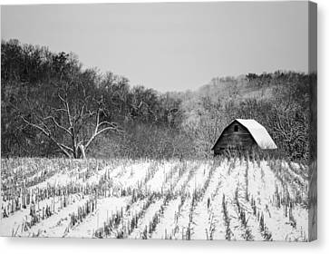 The Snowy Aftermath In Black And White Canvas Print by Todd Klassy