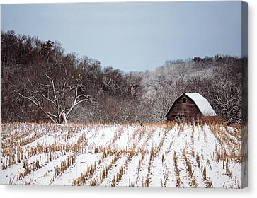 The Snowy Aftermath Canvas Print by Todd Klassy