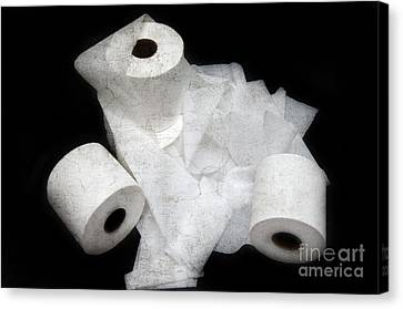The Spare Rolls 3 - Toilet Paper - Bathroom Design - Restroom - Powder Room Canvas Print by Andee Design