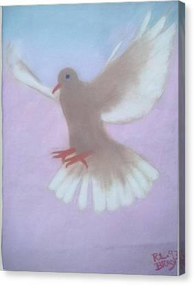 The Spirit Descendedlike A Dove. Canvas Print by Robert Bray