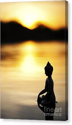 The Stillness Of Sunrise Canvas Print by Tim Gainey