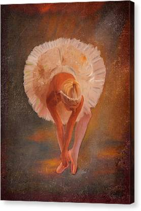 The Swan Warming Up Canvas Print by Angela A Stanton