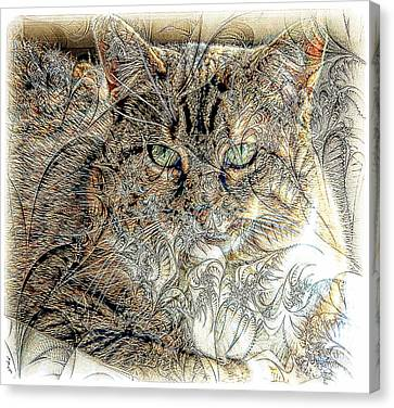The Tapestry Cat Canvas Print by Kathleen Struckle