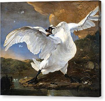 The Threatened Swan Canvas Print by Jan Asselyn